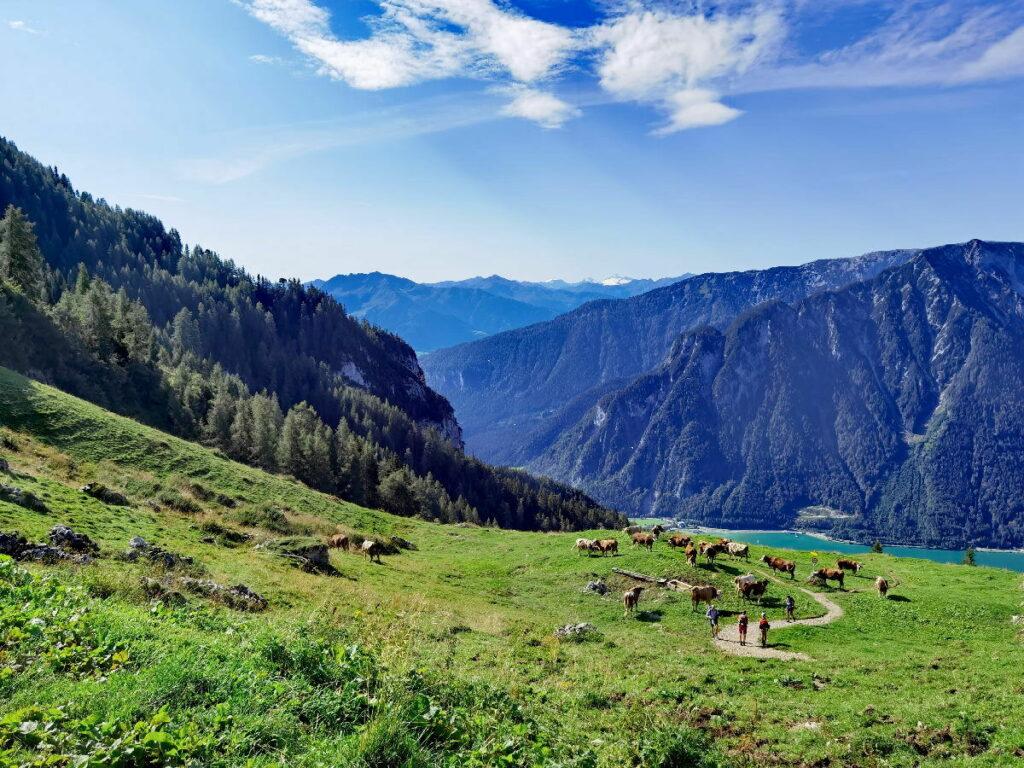 Dalfazalm Wanderung  am Achensee